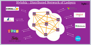 Hylobiz Integration with ERP's