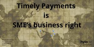 Hylobiz - On time Payments