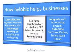 How Hylobiz Helps Businesses